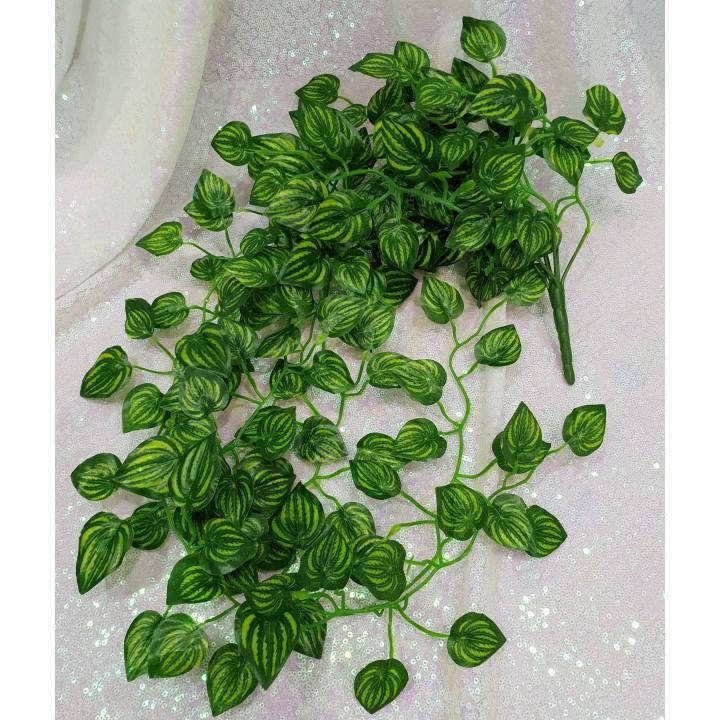 Букет из зелени (плющ)