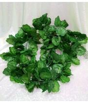 Ветки зелени
