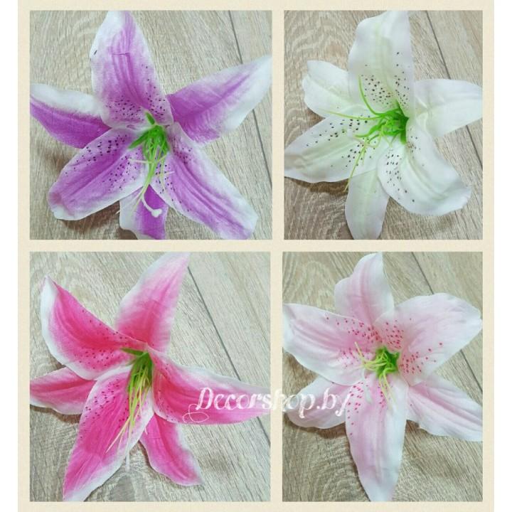 Головы лилии 18 см