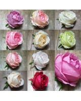 Головы роз 10 см новые