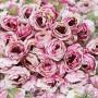 Головы роз 3-4 см