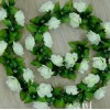 Лианы и цветочные каркасы