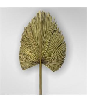 Листья пальмы декоративные обрезанные