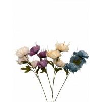 Розы на ветке