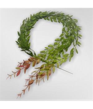 Декоративные ветки зелени